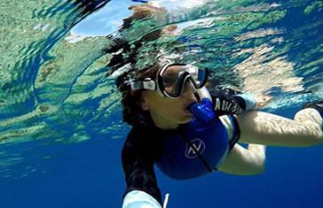 Salida de Snorkeling