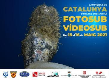 Campionat de Catalunya d'imatge Submarina 2021