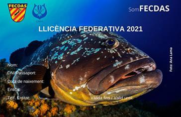 Licencia Federativa FECDAS