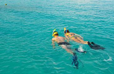 Salida de Snorkeling desde Playa