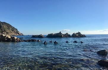 Pack 3 inmersiones desde Playa