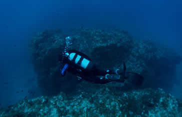 Pack 10 inmersiones desde Playa