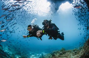 Curso PADI Open Water Diver para 4 personas